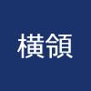 横領:大阪府泉佐野市 健康福祉部 59歳女性職員 約1億5千万円を着服 要介護認定者の住宅改修費や福祉用具購入費